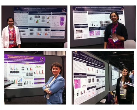aacr-2013